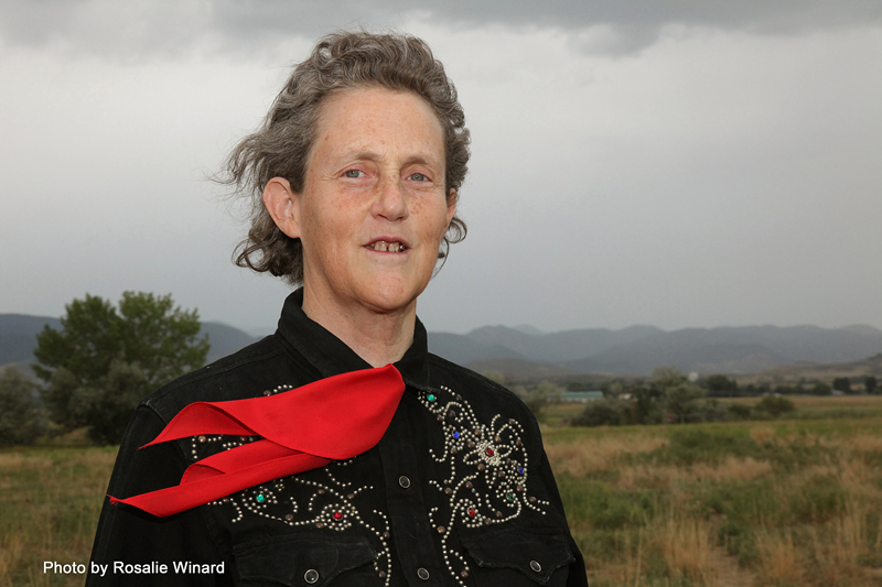 Temple Grandin on new edition of 'Genetics and the Behavior of Domestic Animals'